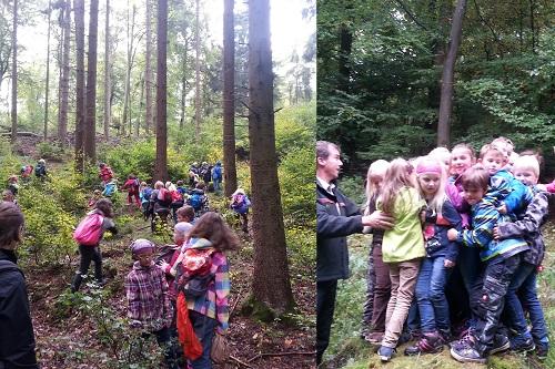 Ausflug in den Wald1